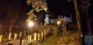 Pałac Marianny Orańskiej widziany nocą (2)