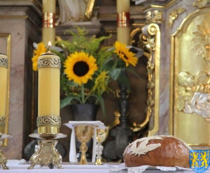 Światło pszennego chleba (66)