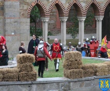 Bieg wystawa bitwy i koncerty (142)
