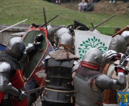 Bieg wystawa bitwy i koncerty (172)