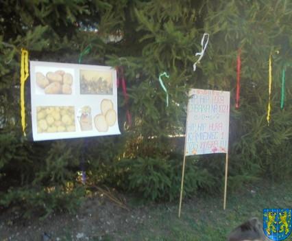 Święto Pieczonego Ziemniaka w Baśniowej Krainie (4)