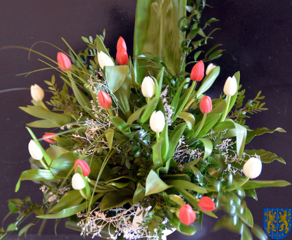 V Wiosna Tulipanów za nami166