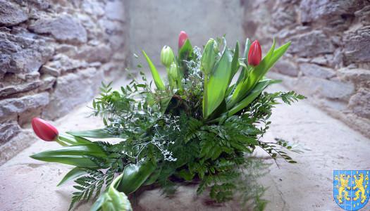 V Wiosna Tulipanów za nami [FOTOREPORTAŻ / VIDEO]