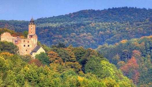 Idziemy na Zamek Grodno