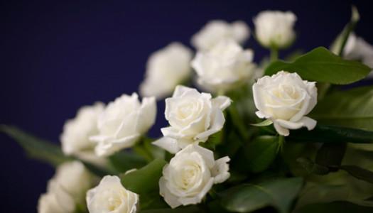 """""""Śmierci nie można przekupić ani od siebie oddalić.""""  (św. Jan Paweł II)"""