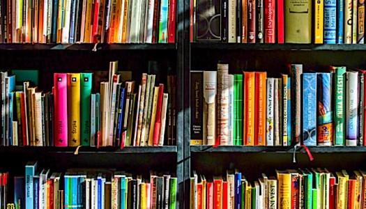 Powstanie kamieniecka Biblioteka Malucha – z pomocą ministerstwa kultury i dziedzictwa narodowego