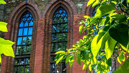 Rekonstrukcja okien w Pałacu Marianny Orańskiej – efekt jest niezwykły